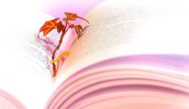 Światowy Dzień Poezji po raz 21.