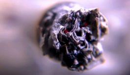 Unia Europejska uderza w rynek tytoniowy